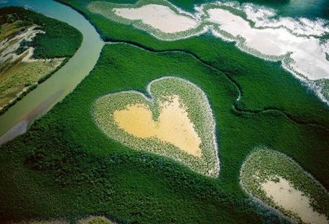 Любовь земная