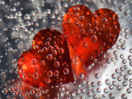 Ледяное сердце растопит любовь